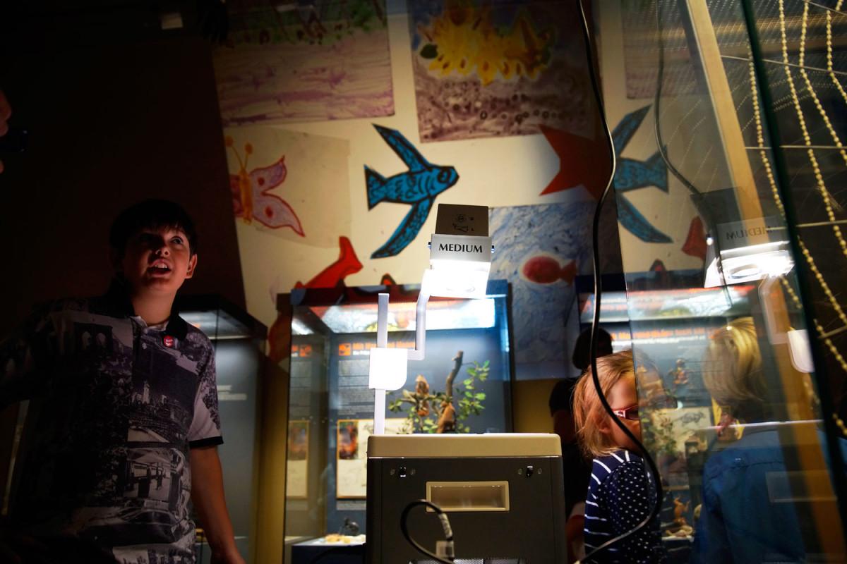44flavours — Kunstherbst für Kids